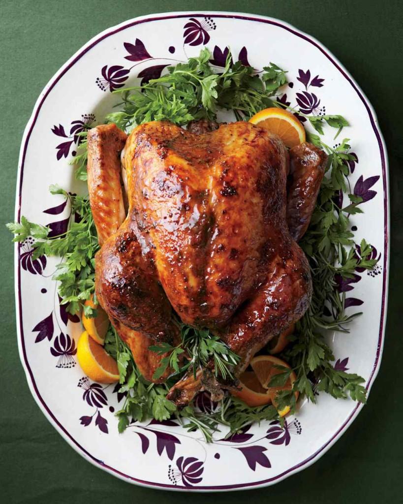 thanksgiving-turkey-med107616_vert