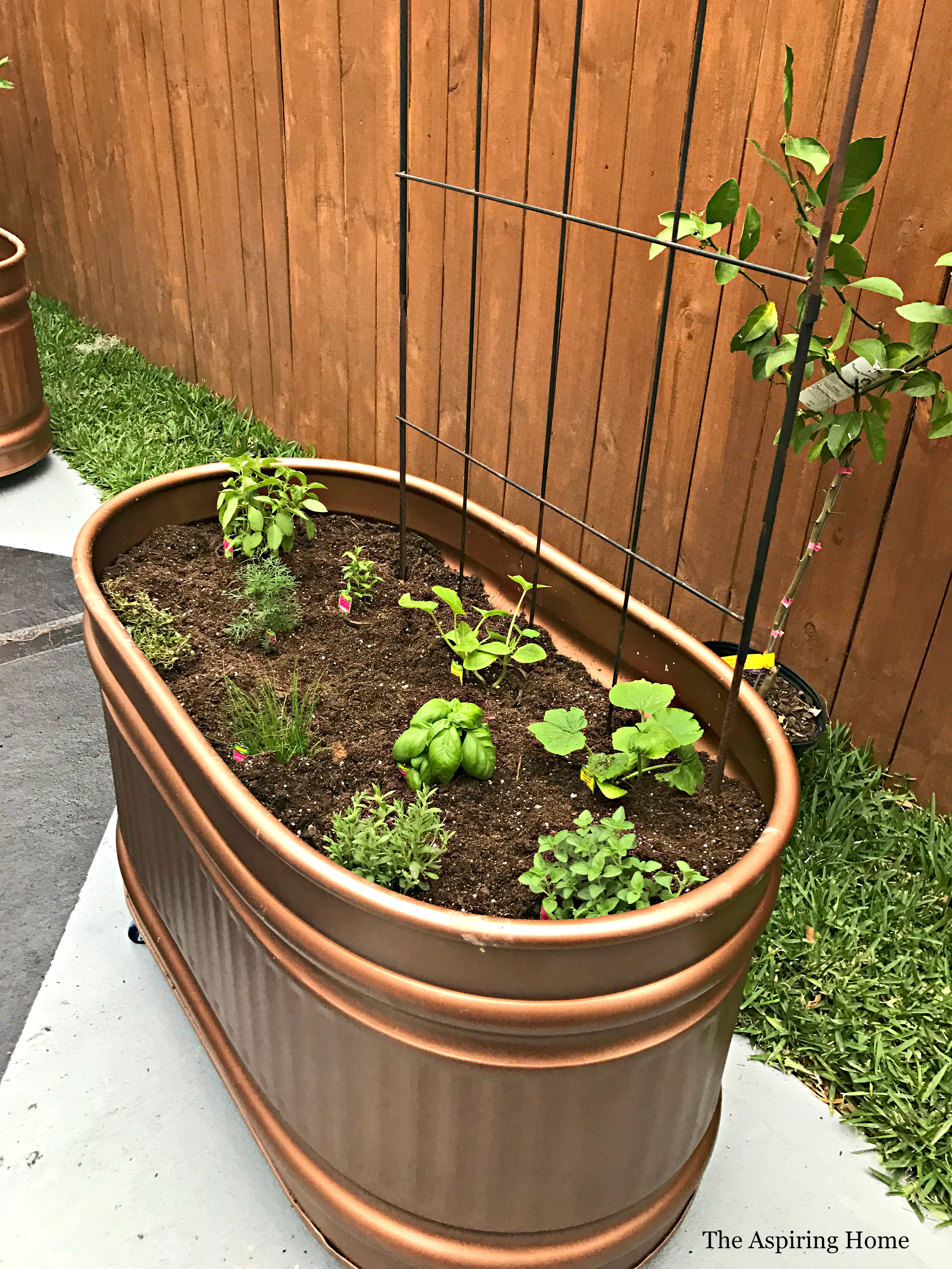 copper horse trough planter