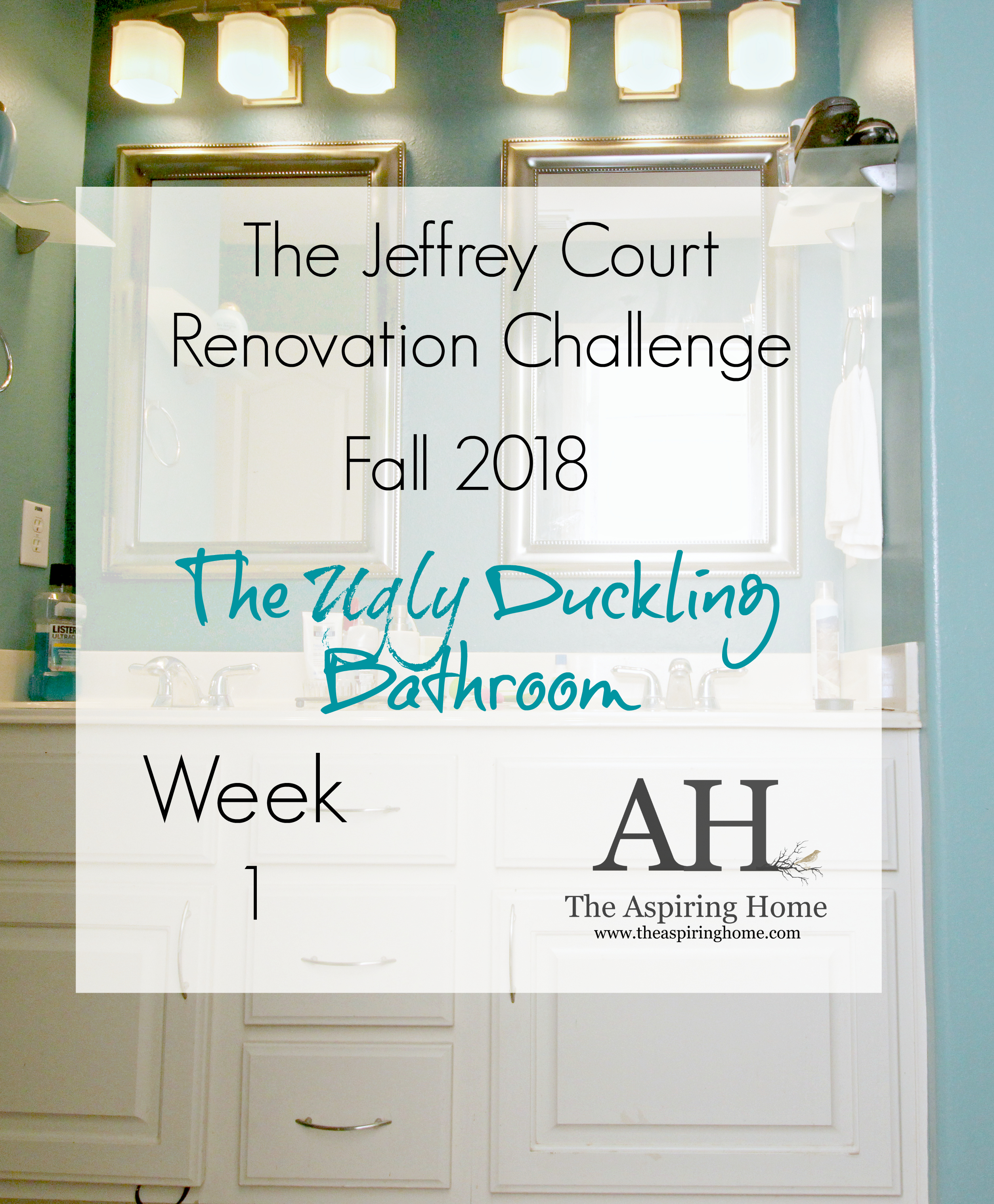 the ugly duckling bathroom renovation with Jeffrey Court