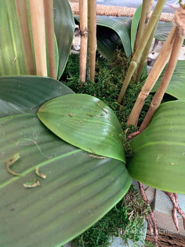 closeup faux leaves easy diy orchid arrangement