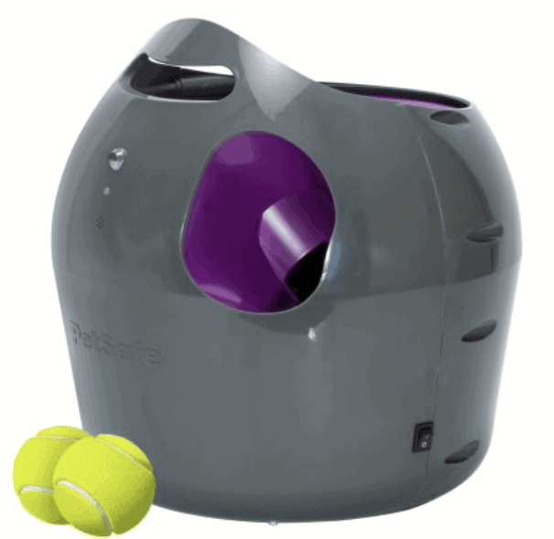 auto tennis ball thrower for dogs